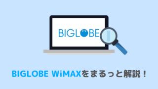 BIGLOBE WiMAXまとめ